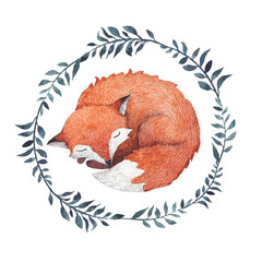 A cute sleeping fox inside a wreath of branches.