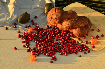 raw cranberries food still life