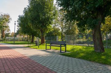 Obraz Ławka w parku, Jędrzejów - fototapety do salonu