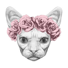 Portrait of Sphynx Cat with floral head wreath. Hand-drawn illustration.