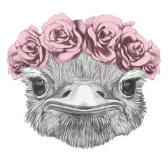 Portrait of Ostrich with floral head wreath. Hand-drawn illustration.