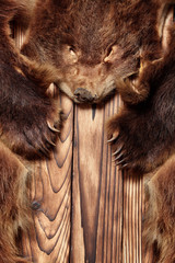 Brown bear fur with head, hunting trophy, on wooden floor.Copy space. Close up.Concept hunters trophies