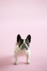 French bulldog shaped miniature on pink