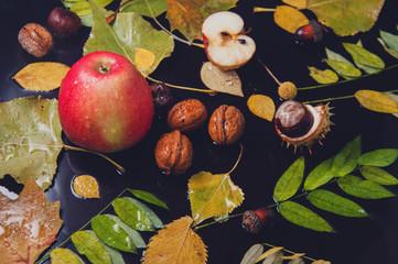 Autumn rainy still life - yellow leaves, apples, walnuts, acorns, chestnuts on a wet background. Autumn mood.