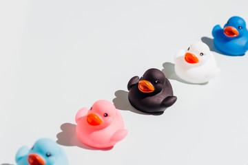 Colorful rubber ducks