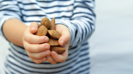 Child hands with some brown almonds against a white background. Empty copy space for Editor text.