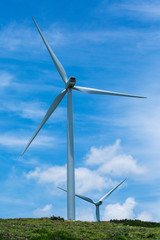 Two of many windmills in a wind farm that generates alternative source of power