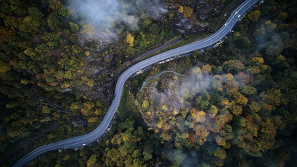 Spoed Fotobehang Luchtfoto street from above trough a misty forest at autumn, aerial view flying through the clouds with fog and trees