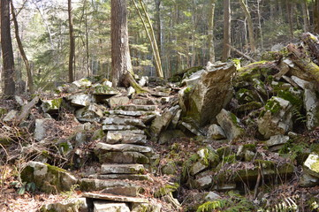 Stone stairway in the woods