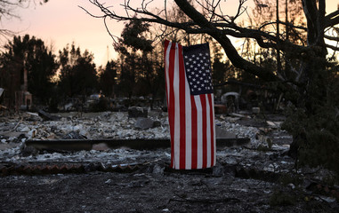 An American flag hangs from a tree in a neighborhood destroyed by wildfire in Santa Rosa, California, U.S.