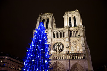 Christmas tree in front of the Notre Dame cathedral at night. Paris, France.