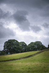 Characteristically English limestone walls in the green fields the Dales