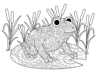 Frog on a lily in the swamp coloring book for adults raster