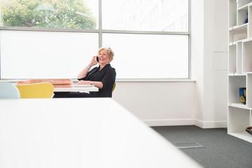 Businesswoman on telephone call