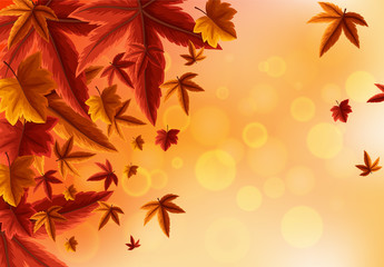 Background design with orange leaves