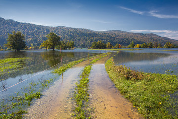 Flooded country road and Fields of Planinsko polje, Slovenia