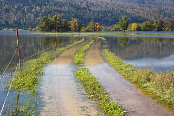 Flooded country road of Planinsko polje, Slovenia