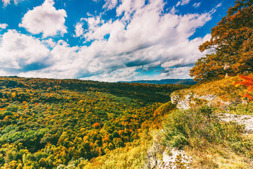 autumn landscape. view of the colorful forest and blue cloudy sky on a warm Sunny autumn day