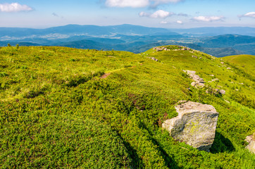 hills of mountain ridge with huge boulders. beautiful landscape in summer