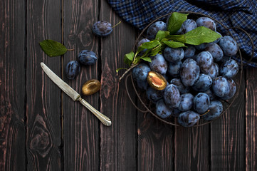 Garden blue plums in a bowl on a dark rustic wooden background with copy space top view.