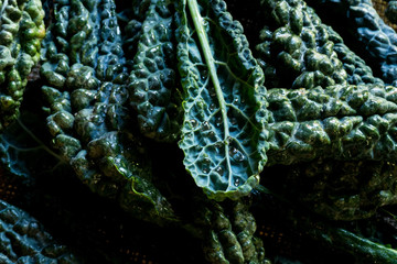 Kale on Burlap in Closeup