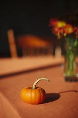 Mini Pumpkin on Table