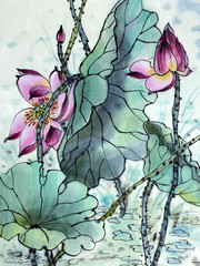 drawing of a blossoming lotus