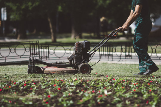 Worker mowing the lawn, maintaining the yard