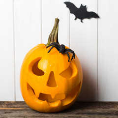 Scary halloween pumpkin with bats on white background. Halloween scene.