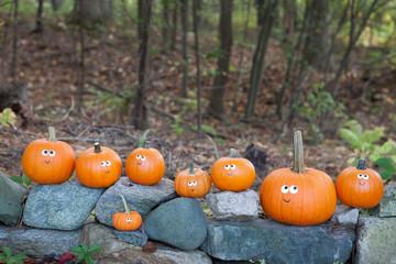Pumpkins on rocks