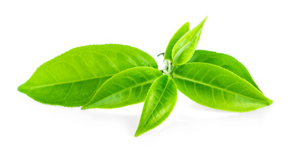 tea leaves on white background