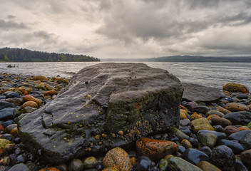 Vashon rock beach