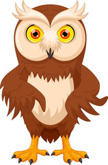 Vector illustration of cute cartoon owl isolated on white background