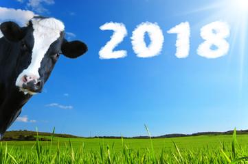 Auguri di Buon Anno con mucca che guarda e panorama con prateria e raggi di sole