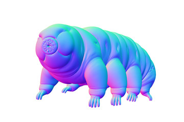 tardigrade, water bear isolated on white background