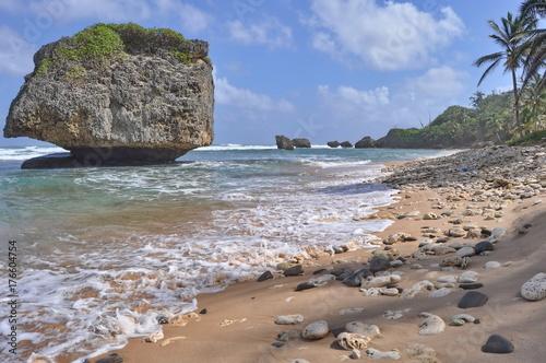 coastline in barbados fotolia com の ストック写真とロイヤリティ