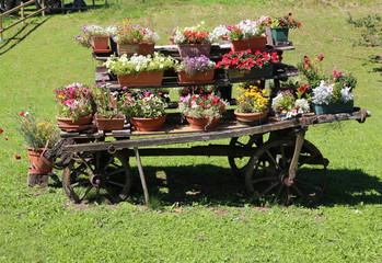 wooden chariot with flower pots to decorate the garden