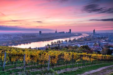 Wien erwacht #7