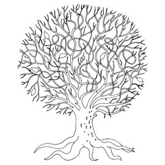 hand-drawn tree