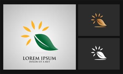 leaf sun rays logo