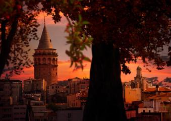Galata Kulesi, Tarihi İstanbul Manzarası