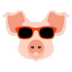 pig face head glasses vector illustration style flat