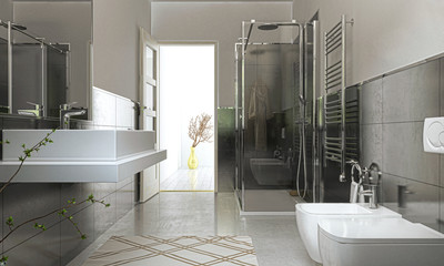 Bagno Domestico, Interior, Rendering, Illustrazione 3d, wc, sanitari, interior