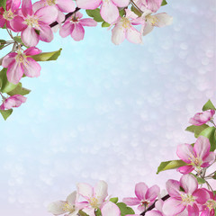 Pink cherry or apple blossom greeting/invitation card