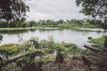 City of the Amazon