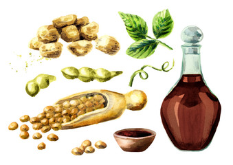 Soy products set with soybeans, meat, and sauce. Watercolor hand drawn illustration.