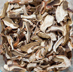 Dried white mushrooms closeup