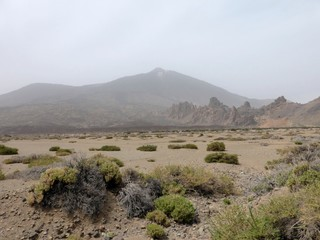 Desert landscape on the island of Tenerife, one of the Canary Islands