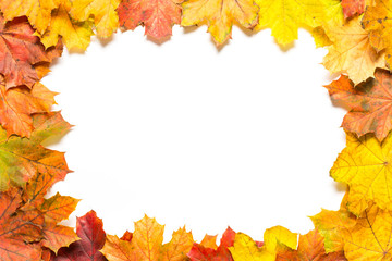 Frame out of colourful autumn leaves on white background