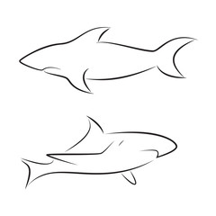 Black line sharks on white background. Hand drawing vector graphic.